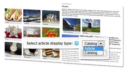 ARTICLE DISPLAY AND CATALOG DISPLAY MODE